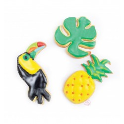 Cookies toucan, pineapple and palm tree leaf