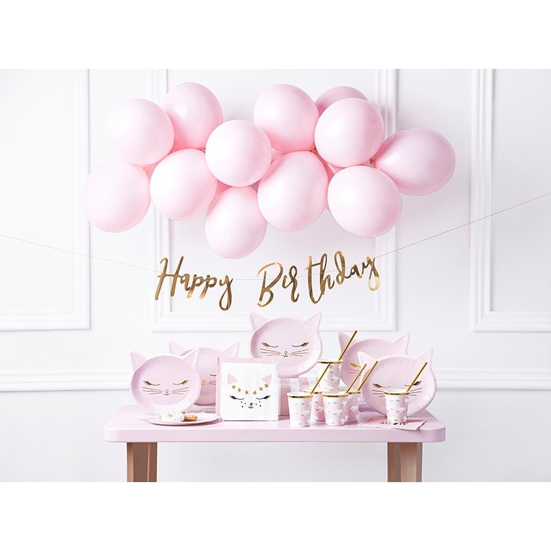 box, decoration, Birthday, cat, assiettes, straw, garland, balloon, pink