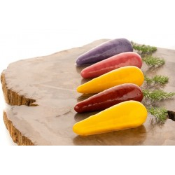 mold, silicone, dessert, entremet, Carrot, carota
