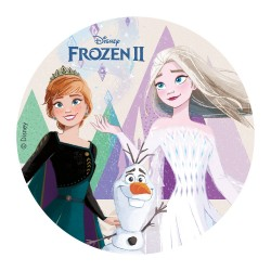 edible disc, decoration, cake, Frozen 2