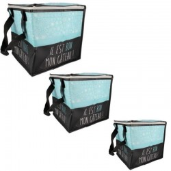 Cooler bags - size to choose