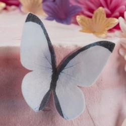 Assortment of butterflies in wafer paper