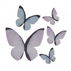 Assortment of butterflies in wafer paper