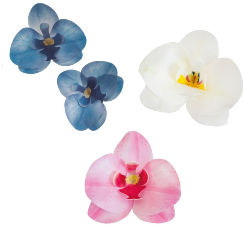 Orchids in wafer paper in various colors