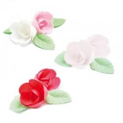 Set de roses