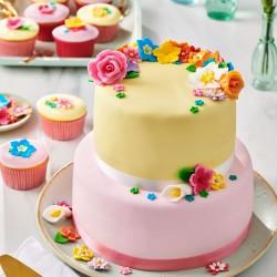 Pâte a Sucre gâteau