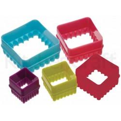 Emportes pièces carré 5pcs