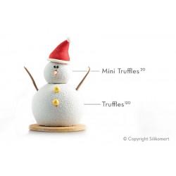 "Moule en silicone ""Truffles 20"", moule boule, moule silicone boule, bille en pâtisserie, moule en silicone forme bille, moule fo"