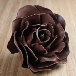 Fleur en chocolat de modelage
